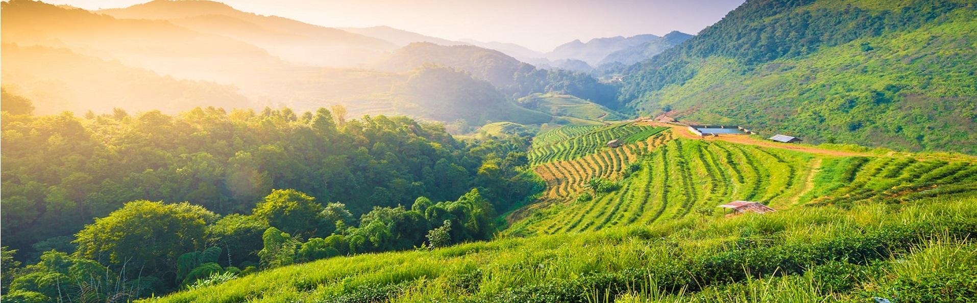 Agence de voyage francophone au Vietnam, Laos et Cambodge