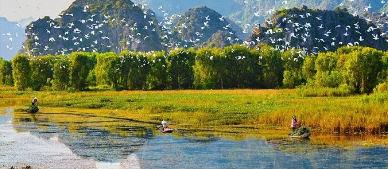 excursion-en-bateau-a-van-long-ninh-binh