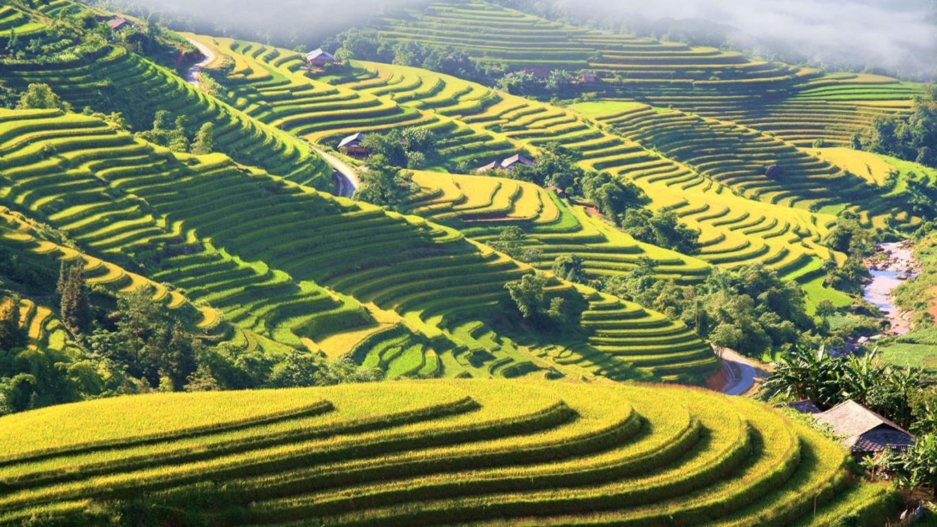 Très bonne agence de voyage locale Vietnam sérieuse et professionnelle