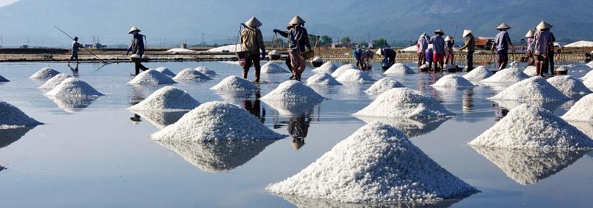 Voyage au Vietnam des parrainages avec agence de voyage au Vietnam fiable