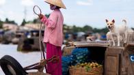 Croisière delta du Mékong en jonque Cai Be Princess une journée