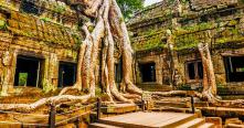 Guide francophone Cambodge