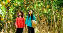 Guide francophone my tho cai be tien giang vietnam
