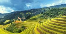 Guide complet pour voyage Hoi An sites incontournables