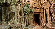 Top meilleures choses à faire pour voyage au Cambodge Agence voyage locale