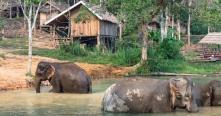 Top meilleures choses à faire pour voyage au Laos Agence voyage locale