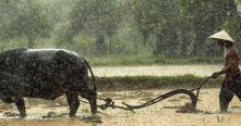 Voyage au Laos pendant la saison des pluies