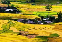 Le Nord-est Vietnam (Dong Van, Meo Vac) 10 jours 9 nuits